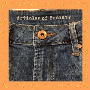 ARTICLES OF SOCIETY SKINNY JEAN MEDIUM WASH 29